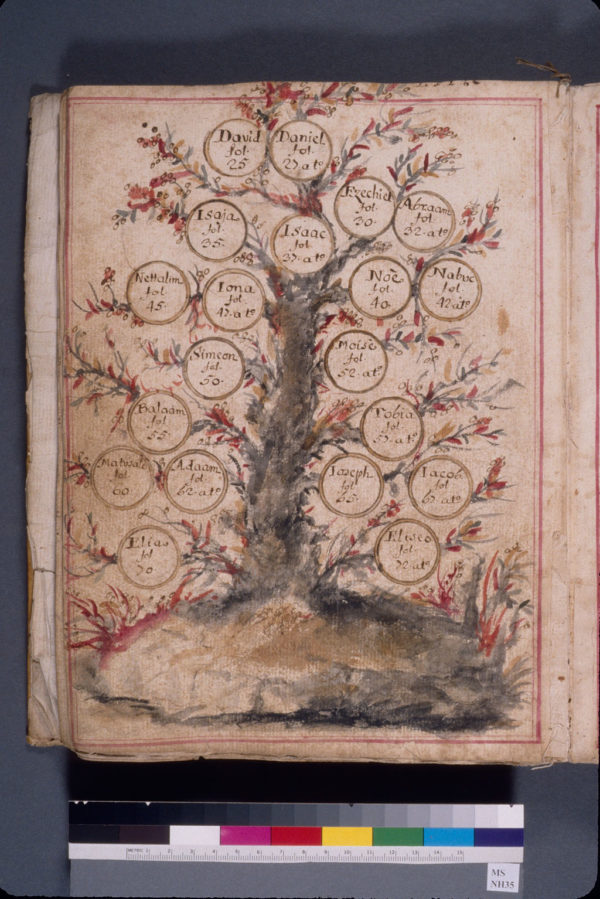 New York, Jewish Theological Seminary of America, MS NH35, f. 24v